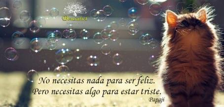 ser_feliz