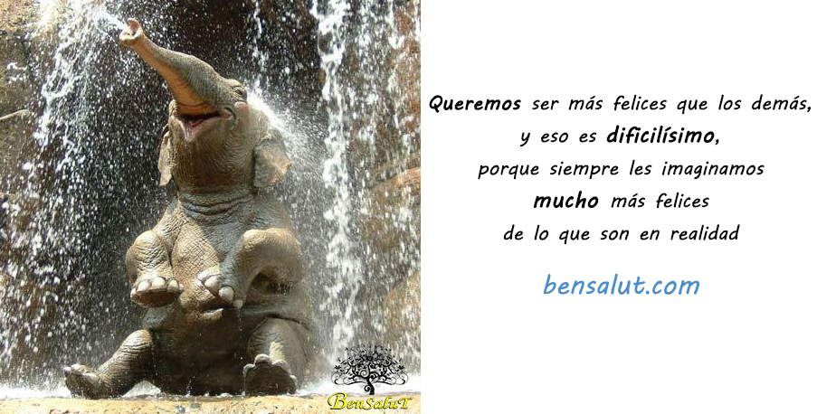 elefante-felizzz.jpg