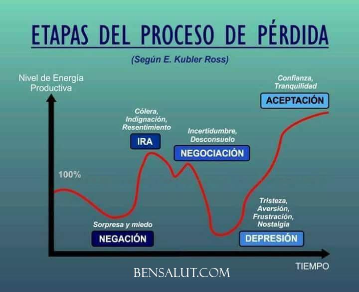 etapas_duelo_psicologia.jpg